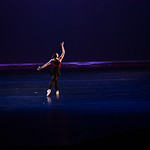 Nicole Fassett Photography's photo